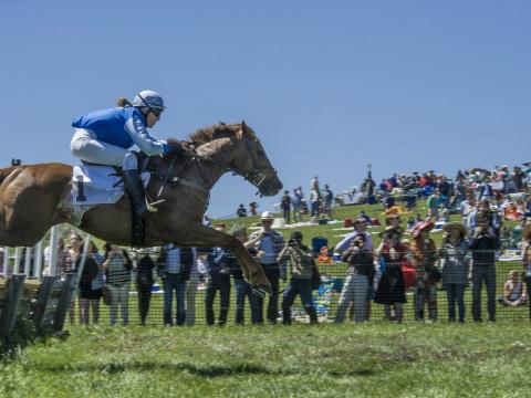 Horse jumping event at Point-to-Point at Winterthur in Wilmington, Delaware