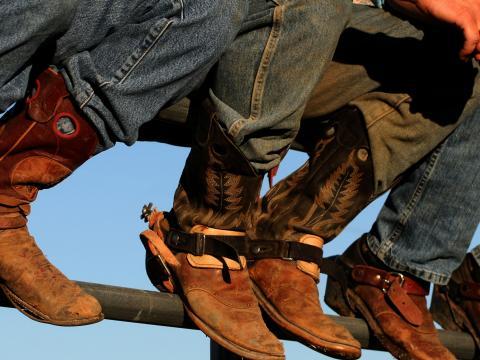 Exhibición de botas vaqueras en Western Idaho Fair