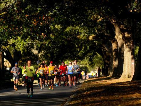 Corriendo bajo los robles en el Louisiana Marathon