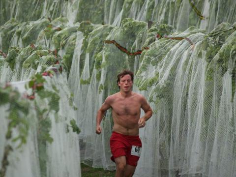 Corriendo entre las viñas en la Harvest Stompede