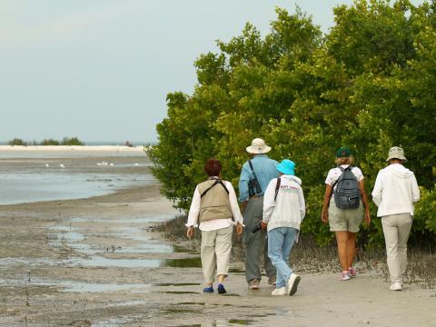 Los amantes de las aves explorando la Rookery Bay durante el Southwest Florida Festival of Birds