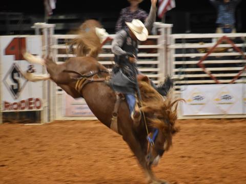 Compitiendo en el Indiantown Rodeo en Florida
